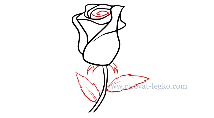 05.Как нарисовать розу карандашом поэтапно