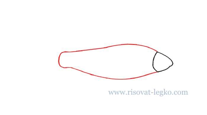 03.Как нарисовать рыбу поэтапно карандашом новичку