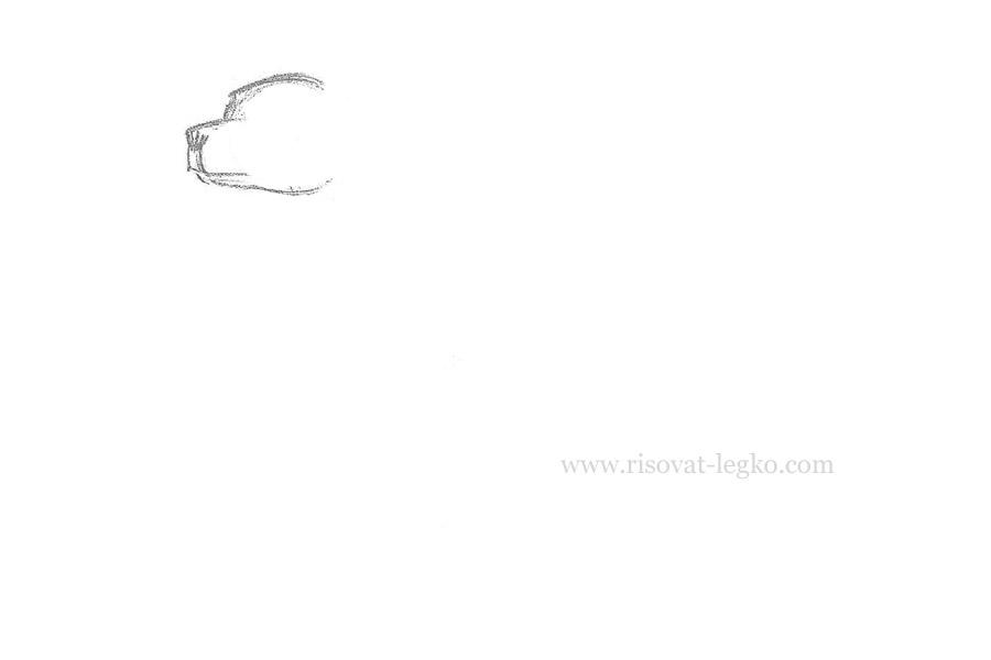 02.Как нарисовать собаку карандашом поэтапно