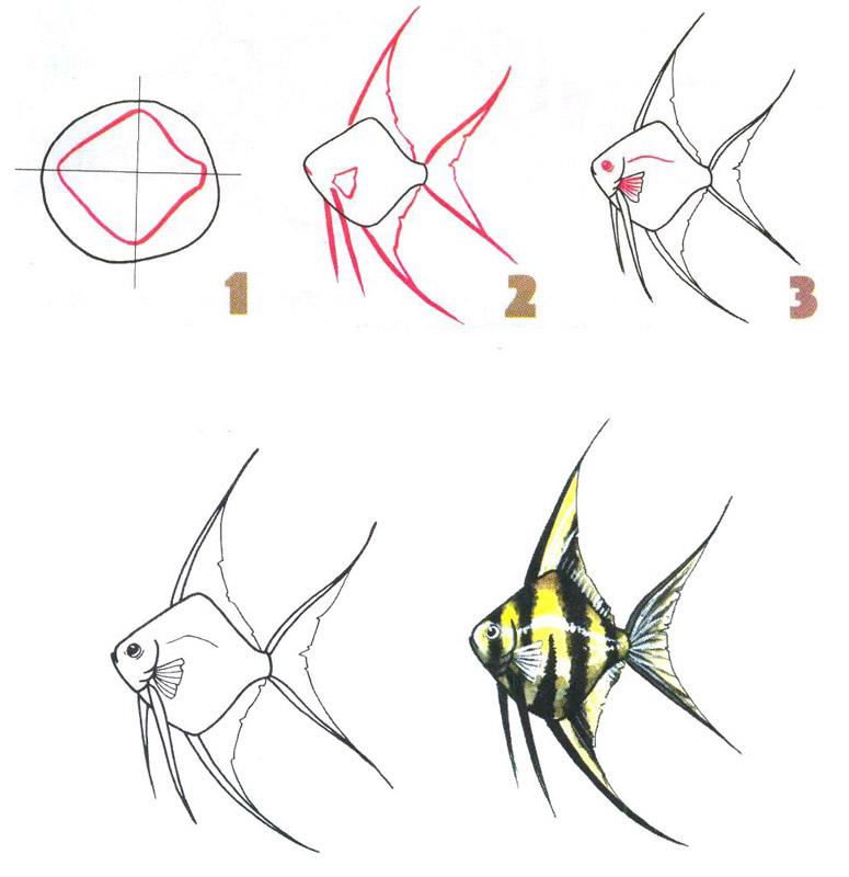 Геометрические рисунки карандашом поэтапно