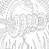 07.Раскраски антистресс животные: скачать распечатать