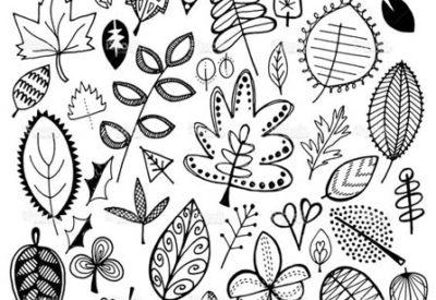 16.черно-белые картинки для срисовки